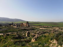 Volubilis, Morocco. Roman site in Africa Royalty Free Stock Photography