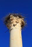 Volubilis, Morocco - UNESCO World Heritage site Stock Images