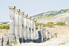 Volubilis - Roman basilica ruins in Morocco Royalty Free Stock Photo
