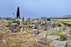 Volubilis - Roman basilica ruins in Morocco, North Africa Royalty Free Stock Photography