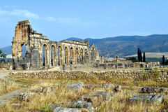Volubilis - Roman basilica ruins in Morocco, North Africa Stock Photography