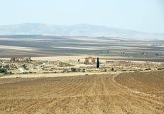 Volubilis - Roman city in Morocco Royalty Free Stock Photo