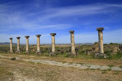 Volubilis. Is a Roman city in Morocco situated near Meknes Stock Photography