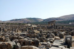 Volubilis Roman old city Royalty Free Stock Image