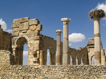 Volubilis Roman old city. Volubilis Roman old city, Morocco, and it is declared a UNESCO World Heritage site. Sunny summer day Stock Image