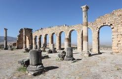Volubilis - romaren fördärvar i Marocko Royaltyfri Bild