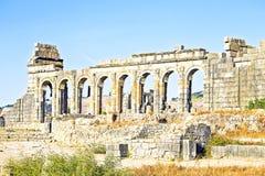 Volubilis - ruinas romanas de la basílica en Marruecos Foto de archivo libre de regalías