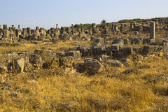 Volubilis ruins. Volubilis is the best preserved Roman site in Morocco, and features some brilliant mosaics. It was declared a UNESCO World Heritage site in 1997 royalty free stock photo