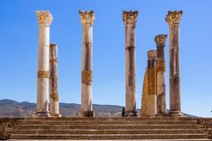 The Volubilis site in Morocco Stock Images