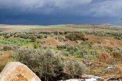 Volubilis vicino a Meknes nel Marocco Volubilis è un Amazigh parzialmente scavato, quindi la città romana nel Marocco si è situat fotografia stock