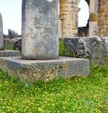 Volubilis w Morocco Africa stary rzymski marniejący zabytek Zdjęcie Royalty Free