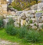 Volubilis w Morocco Africa stary rzymski marniejący zabytek Fotografia Stock