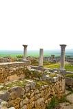 volubilis w Morocco Africa stary rzymski miejsce i zabytek Obraz Royalty Free