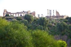 volubilis w Morocco stary rzymski miejsce i zabytek Zdjęcie Royalty Free