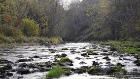 Volume de água no rio sobre as rochas video estoque