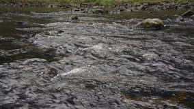Volume de água no rio sobre as rochas vídeos de arquivo