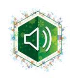 Volume speaker icon floral plants pattern green hexagon button vector illustration