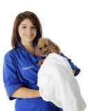 Voluntario del veterinario con el paciente Foto de archivo libre de regalías
