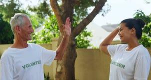 Voluntarios felices que dan a alto cinco el uno al otro 4k almacen de metraje de vídeo