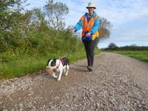 Volunteer dog walker and dog. A female volunteer dog walker for the RSPCA Royal Society for the Prevention of Cruelty for Animals taking a rescue dog for a walk Royalty Free Stock Image
