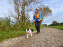 Volunteer dog walker and dog. A female volunteer dog walker for the RSPCA Royal Society for the Prevention of Cruelty for Animals taking a rescue dog for a walk Royalty Free Stock Photo