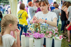 Volunteer at floristic workshop. Zaporizhia/Ukraine- May 28, 2017: Charity Family festival- young woman- volunteer- preparing flowers for floristic workshop Royalty Free Stock Photography