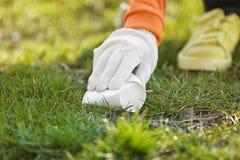 Volunteer picking up litter from grass. Closeup Stock Photos