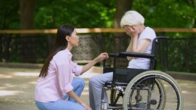 Volunteer talking with crying woman in wheelchair, psychological support, park. Stock footage stock video footage