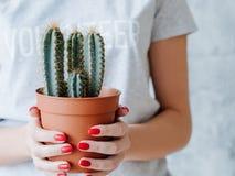 Volunteer woman flowerpot environment protection. Volunteer woman holding flowerpot with green cactus. environment protection and activism royalty free stock photos