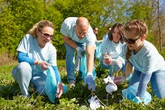 Volunteers with garbage bags cleaning park area. Volunteering, charity, people and ecology concept - group of happy volunteers with garbage bags cleaning area in Royalty Free Stock Photography