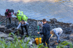 Volunteers at Archaeological Dig. From the recent dig at South Hylton which is looking for `Sunderland`s Forgotten Stones` or `Brigg Stones` believed to be from royalty free stock photo