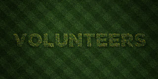 VOLUNTEERS - fresh Grass letters with flowers and dandelions - 3D rendered royalty free stock image. Can be used for online banner ads and direct mailers Royalty Free Stock Photography