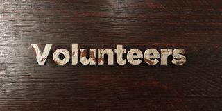 Volunteers - grungy wooden headline on Maple  - 3D rendered royalty free stock image. This image can be used for an online website banner ad or a print Royalty Free Stock Images