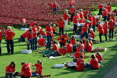 Volunteers installing the 888,246 ceramic poppies Stock Photography
