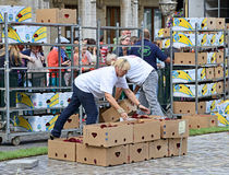 Volunteers prepare boxes with flowers Stock Photography