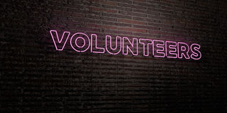 VOLUNTEERS -Realistic Neon Sign on Brick Wall background - 3D rendered royalty free stock image. Can be used for online banner ads and direct mailers Stock Image