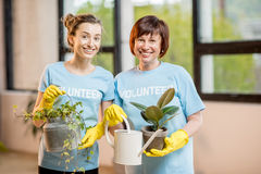 Volunteers taking care of plants. Young and older volunteers dressed in blue t-shirts taking care of green plants indoors royalty free stock images