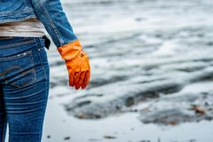 Volunteers wear jeans and long sleeved shirts and wear orange rubber gloves to collect garbage on the beach. Beach environment. stock photography