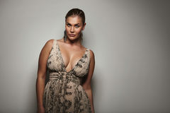 Voluptuous female model posing a beautiful dress Royalty Free Stock Images