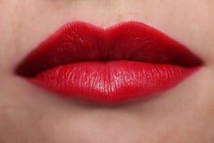 Voluptuous rote Lippen Lizenzfreies Stockbild