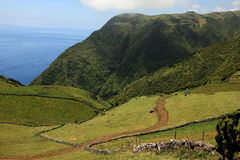Volvanic Landscape At Sao Jorge, Azores Stock Photography