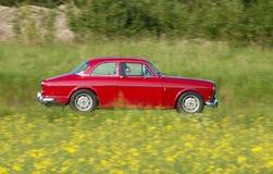 Volvo amason royaltyfria foton