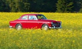 Volvo Amazonië Royalty-vrije Stock Fotografie