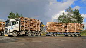 Volvo FH16 700 Birch Timber Transport. JAMSA, FINLAND - AUGUST 28, 2014:  Volvo FH16 700 timber truck with a full load of birch. The export of Finnish forest Stock Photos