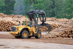 Volvo L180F HL Log Loader at Lumber Yard Stock Photo