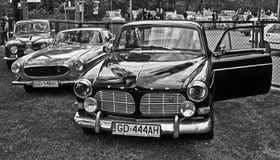 Volvo and Saab at a car show Royalty Free Stock Photos