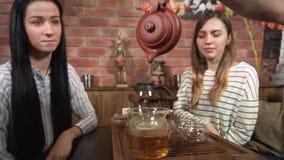 Volwassen Groep de Thee van Puerh van de Vriendendrank stock videobeelden