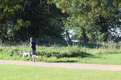 Volwassen mannelijke jogging met een spotty hond stock foto