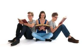 Volwassen mannelijke tweelingen en de jonge boeken van de meisjeslezing Stock Foto's