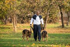 Volwassen Mens die in openlucht met Zijn Hondenduitse herder lopen Stock Afbeeldingen